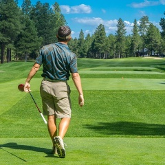 Golfer at Graeagle by Bedrck CC0
