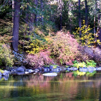 Fall Colors on the Yuba River, CC-BY-2.0 by JCookFisher / Flickr